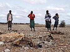 Trockenheit, Hunger und Tod - und Mammutkonferenzen bewegen sich im Kreis.