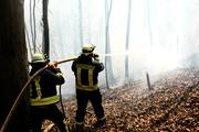 Das sind noch Feuerwehrleute, die sofort löschen, wenn sie an den Brandherd kommen. Das Feuer des griechischen Finanz-Desasters breitet sich hingegen aus - und die Feuerwehr schaut zu.