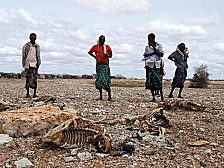 Hungernde in Afrika - ob der Klimawandel uns solche Bilder auch aus Italien und Spanien und Griechenland beschert? Die Mittelmeerländer haben sich im Kampf gegen die Versteppung verbündet. Für den britischen Autor Gwynne Dyer sind das Vorzeichen von schlimmen Spannungen.
