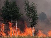 Es brennt mal wieder lichterloh - Euroland ist noch nicht abgebrannt, aber es werden viele weitere Milliarden zum Löschen verteilt. Dabei fehlt kein Geld.